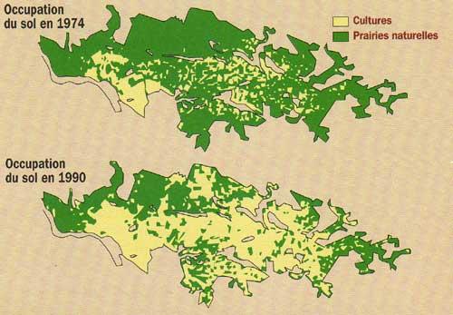 Evolution des modes d'occupation des sols du marais poitevin et des marais charentais. SATEC Développement, 1991.